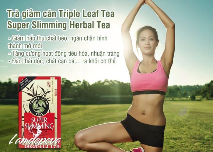 Trà giảm cân Triple Leaf Super Slimming Herbal Tea từ thảo mộc 2
