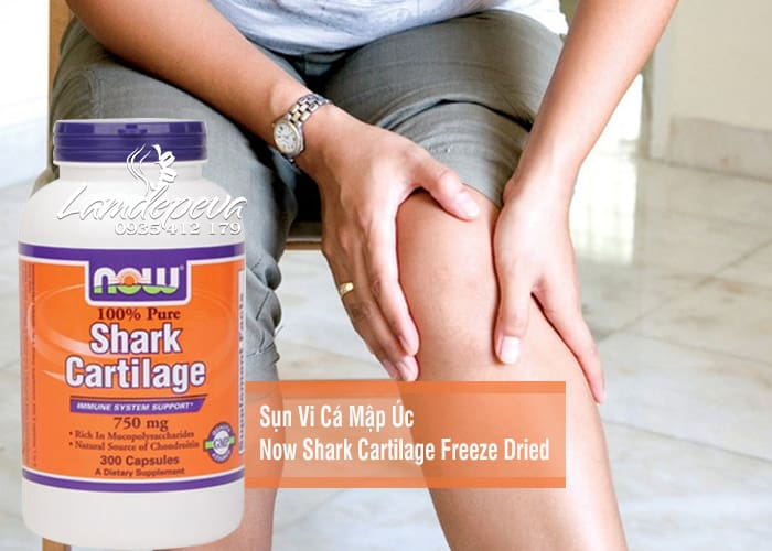 sun-vi-ca-map-uc-now-shark-cartilage-freeze-dried-750mg-1.jpg