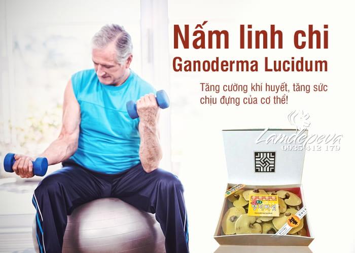 nam-linh-chi-ganoderma-lucidum-loai-1-cua-han-quoc-1-min.jpg